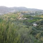 Región de Murcia, Valle de Ricote