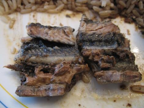 Carne de lamprea